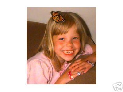 Chrysalis Kit, Butterfly Kit, Butterfly hatching kit, release a butterfly, butterfly release, butterfly, butterflies