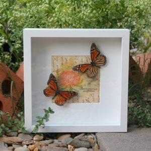 Real Monarch Butterfly Art 2
